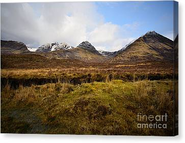 The Cuillins Canvas Print by Nichola Denny