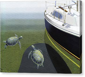 The Curiosity Of Sea Turtles Canvas Print by Gary Giacomelli