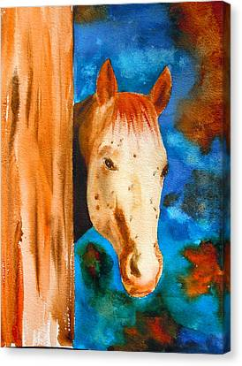 Forelock Canvas Print - The Curious Appaloosa by Sharon Mick