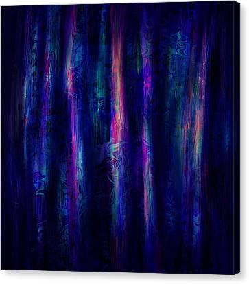 The Curtain Canvas Print by Rachel Christine Nowicki