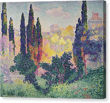 The Cypresses At Cagnes Canvas Print by Henri-Edmond Cross