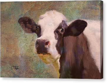 The Dairy Queen Canvas Print by Colleen Taylor