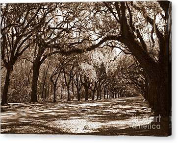 Old Country Roads Canvas Print - The Dance - Sepia by Carol Groenen