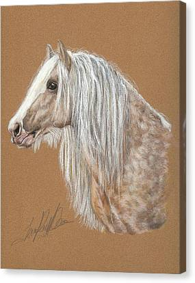 Gypsy Cob Canvas Print - The Dappled Gypsy Romeo by Terry Kirkland Cook
