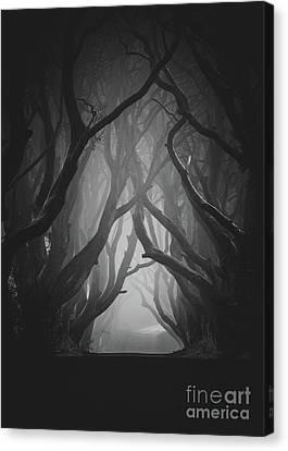 The Darkness Canvas Print by Pawel Klarecki