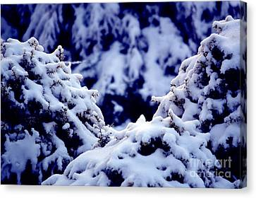 Canvas Print featuring the photograph The Deep Blue - Winter Wonderland In Switzerland by Susanne Van Hulst