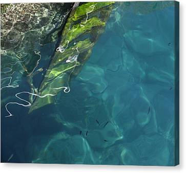 Canvas Print featuring the photograph The Deep by Pat Purdy