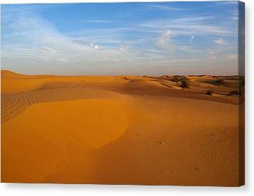 The Desert  Canvas Print by Jouko Lehto