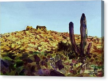 The Desert Place Canvas Print