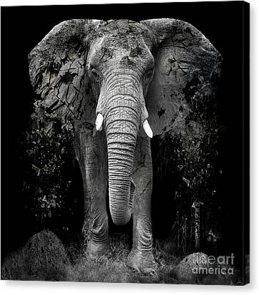 Large Mammals Canvas Print - The Disappearance Of The Elephant by Erik Brede