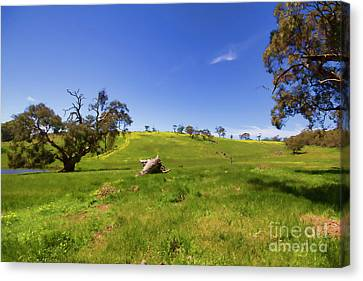 Canvas Print featuring the photograph The Distant Hill by Douglas Barnard