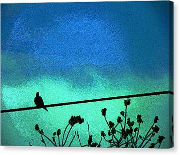 The Dove Above 2 Canvas Print by Lenore Senior
