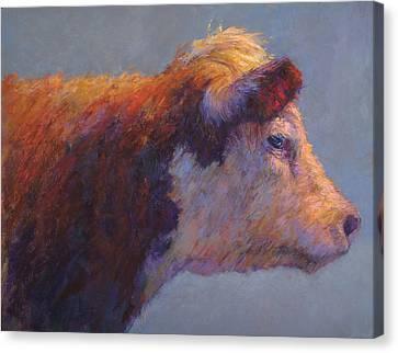 The Dreamer Canvas Print by Susan Williamson