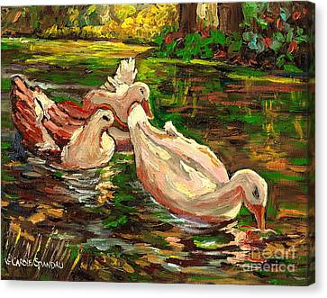The Duck Pond At Botanical Gardens Canvas Print by Carole Spandau