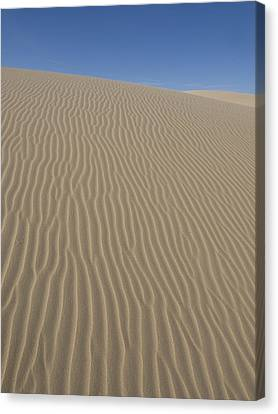 The Dune Canvas Print