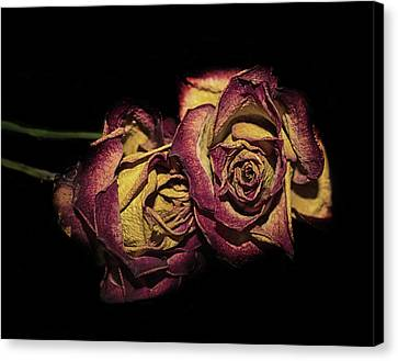 Wedding Bouquet Canvas Print - The Dying Rose by Martin Newman
