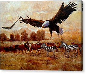 The Eagle - African Safari With Eagles And Zebra Art Print Canvas Print by Kanayo Ede
