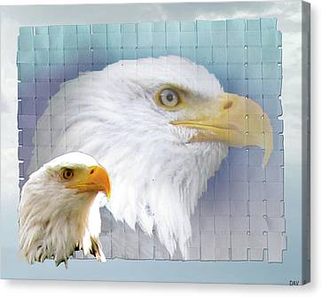 The Eagles Focus Canvas Print by Debra     Vatalaro