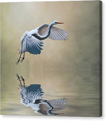 The Early Bird Canvas Print by Brian Tarr