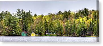 The Early Greens Of Spring Canvas Print by David Patterson