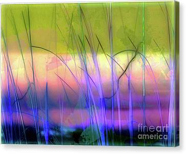 The Edge Canvas Print by Judi Bagwell
