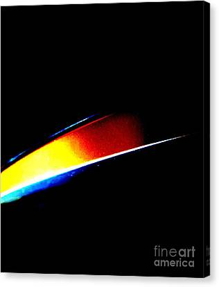 The Edge Canvas Print by Tim Townsend