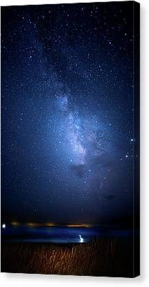 Canvas Print featuring the photograph The Egret And The Milky Way by Mark Andrew Thomas