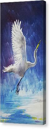Canvas Print - The Egret by Seth Weaver