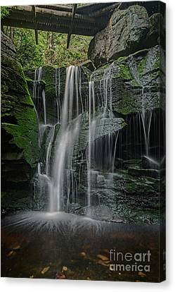 The Elakala Falls Are A Series Of Four Waterfalls Of Shays Run Canvas Print by Dan Friend