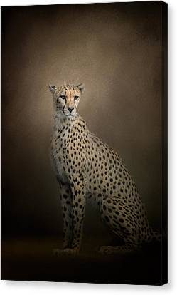 The Elegant Cheetah Canvas Print