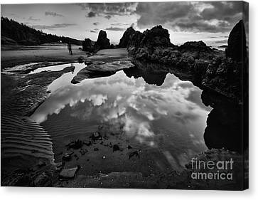 The Entrance To The Other World Canvas Print by Masako Metz