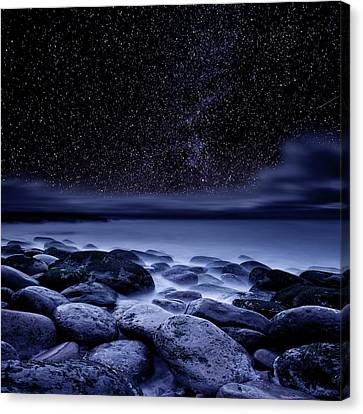 Canvas Print featuring the photograph The Essence Of Everything by Jorge Maia