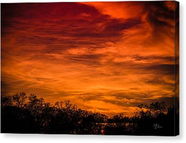 The Evening Sky Of Fire Canvas Print by David Collins