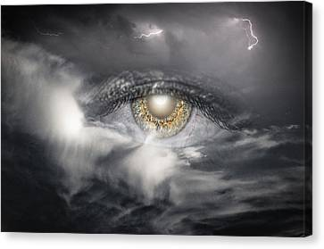 The Eye Of The Storm See's All Canvas Print by My Minds  Photographer