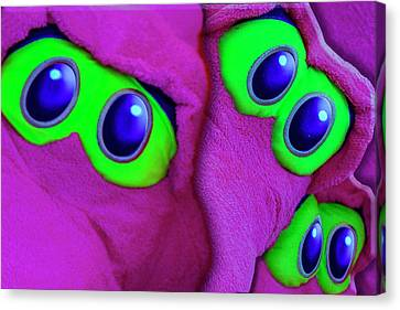Canvas Print featuring the photograph The Eyes Have It by Paul Wear