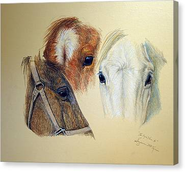 Canvas Print featuring the drawing The Eyes Have It by Suzanne McKee