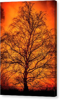 The Fable Known As Hell Canvas Print