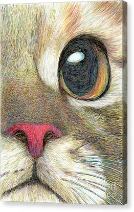 The Face Canvas Print by Jingfen Hwu