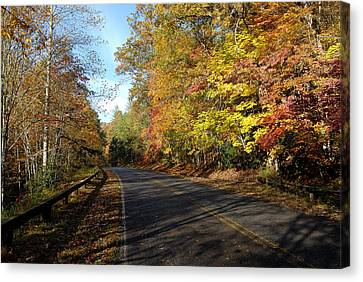 The Fall Drive Canvas Print