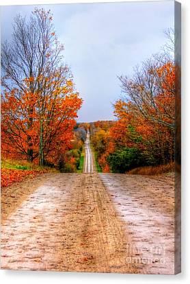 The Fall Road Canvas Print by Michael Garyet