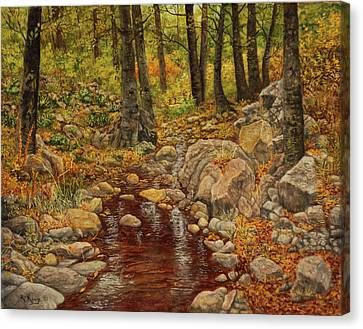 The Fall Stream Canvas Print by Roena King