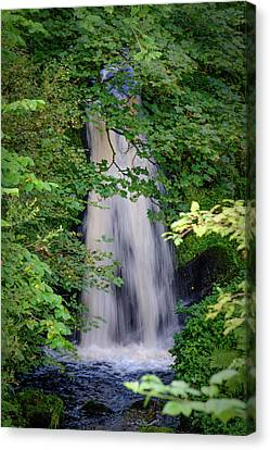 The Falls At Patie's Mill Canvas Print
