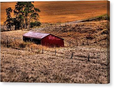 The Farm Canvas Print by David Patterson