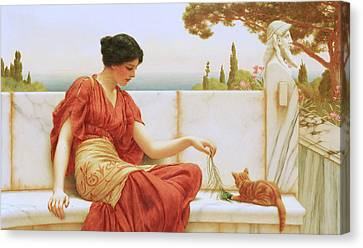 The Favourite Canvas Print by John William Godward