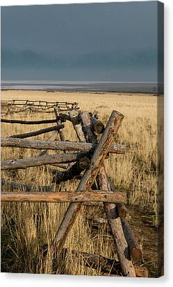 Split Rail Fence Canvas Print - The Fence At Sunset by Teresa Wilson