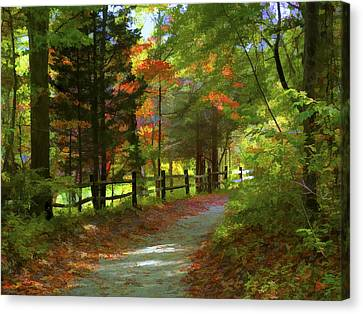 The Fence Canvas Print by Jeff Breiman