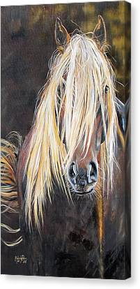 The Feral Canvas Print by Melody Perez