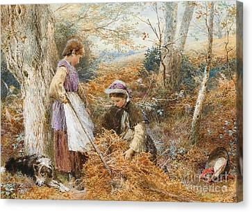 The Fern Gatherers Canvas Print by Myles Birket Foster