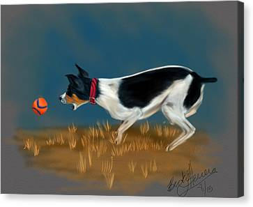 The Fetch  Canvas Print by Becky Herrera