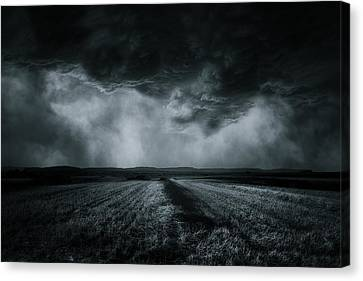The Field Canvas Print by Stefan Eisele